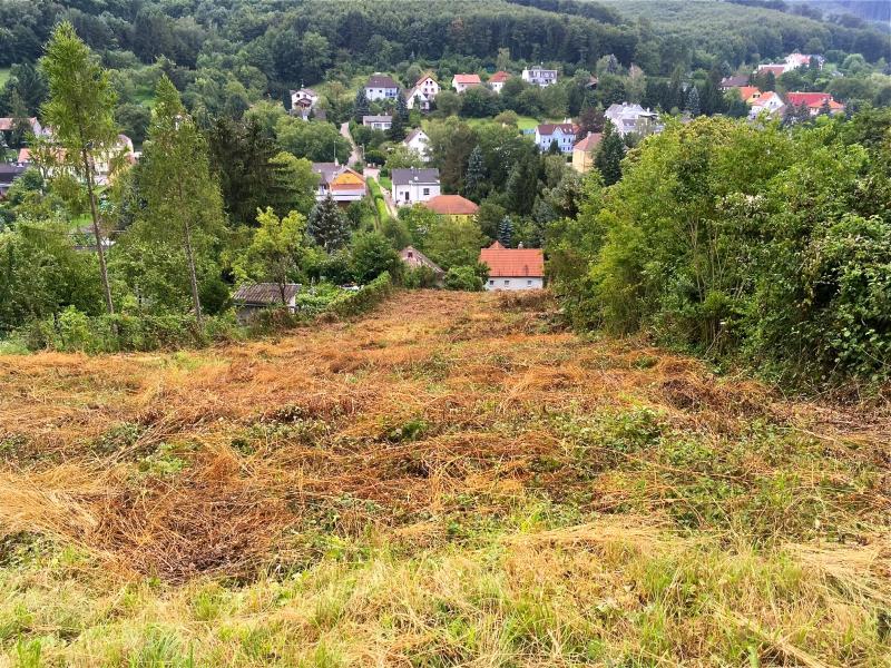 Südseitig mit Panoramablick ins Grüne und uneinsichtig