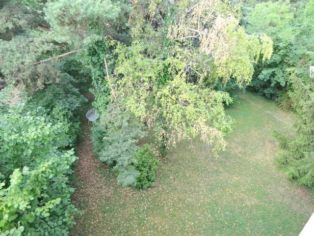 Grünruhelage+Hell + Mitbenützung großer toller Garten, 4 Zimmer + Loggia, ca. 100m, 2ter & letzter Stock /  / 1190Döbling / Bild 4