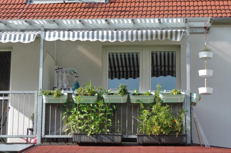 gbild -- Wohnen im Grünen - 2-Zimmerwohnung mit Balkon und Garten  /  / 2410Hainburg an der Donau / Bild 2