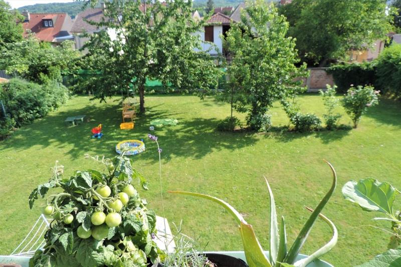 gbild -- Wohnen im Grünen - 2-Zimmerwohnung mit Balkon und Garten  /  / 2410Hainburg an der Donau / Bild 9