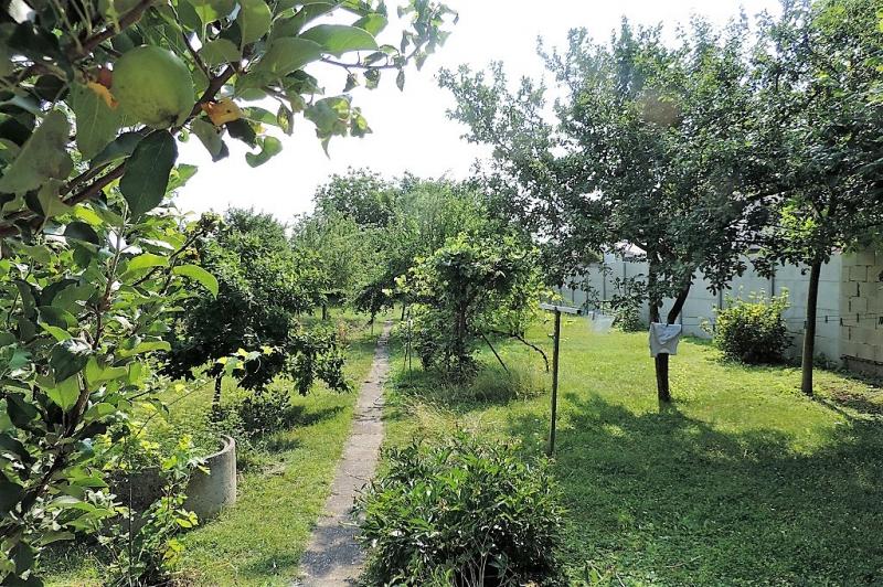 gbild -- Helles Familienhaus mit Innenhof und großem Obstgarten /  / 2261Angern an der March / Bild 4