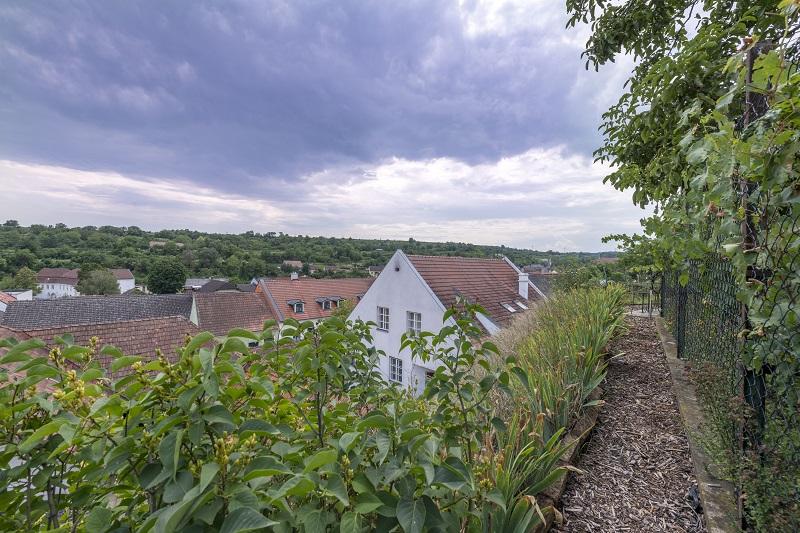 gbild -- Rustikales Wohnhaus in Langenlois /  / 3550Langenlois / Bild 7