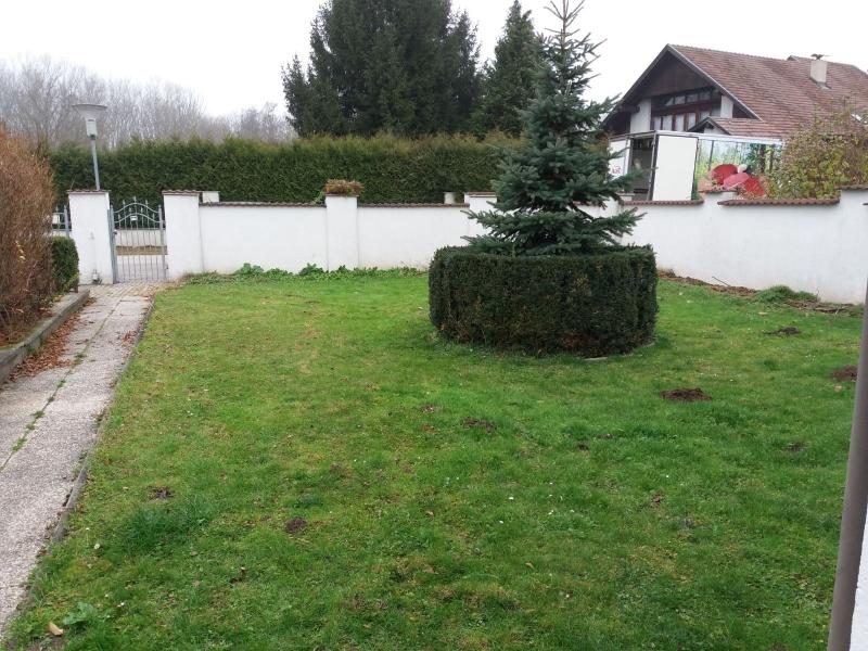 gbild -- Nettes Häuschen in entzückendem Garten /  / 3484Jettsdorf / Bild 3