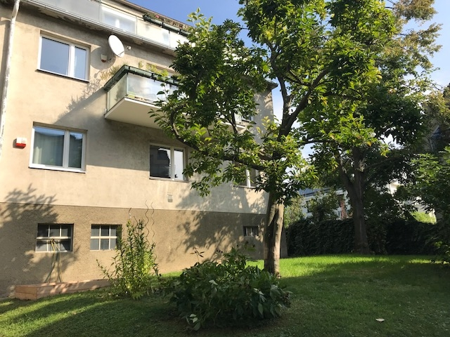 gbild -- HELLE geräumige MIET-Wohnung /  / 1190Wien / Bild 7