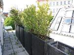 WASAGASSE; KLIMATISIERTE 79 m2 DACHGESCHOSS-WOHNUNG MIT 11 m2 TERRASSE;  3 Zimmer, Kochnische, Duschbad; Fernblick /  / 1090Wien / Bild 9