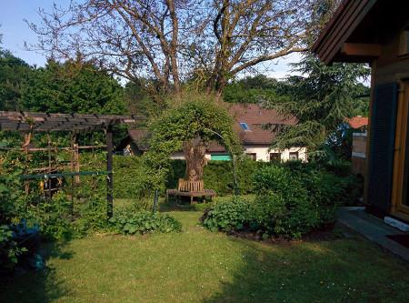 Komfortables Einfamilienhaus, zusätzlich Büro/Ordination-Nutzung möglich! /  / 3013Tullnerbach  / Bild 6